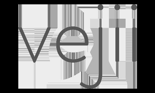 Vejii Logo