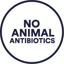 Daring No Antibiotics icon