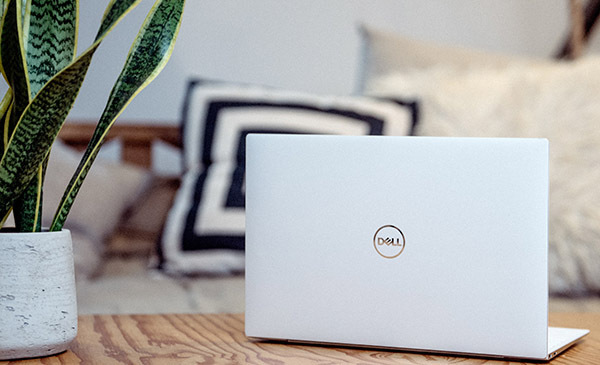 Dell laptop on desk with plant