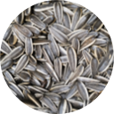 Sunflower seeds used in daring plant based chicken